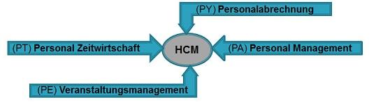 SAP HCM,SAP,Consulting